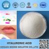 Acido ialuronico utilizzato come riempitore dell'orlo nella chirurgia plastica
