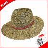 Chapéu de Sun do chapéu de Panamá da palha do plânton vegetal