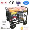Groupe électrogène diesel de cartons intenses (5KW)