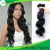 Double Layers를 위한 도매 Price The 브라질 Human Virgin Hair