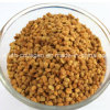 Oberseite 100%Natural chinesisches Herbal Medicine Codonopsis Bee Pollen, kein Antibiotics, kein Heavy Metals, kein Pathogenic Bacteria, Anticancer, Prolong Life, Health Food