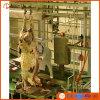 Cer Kosher Cattle Processing Equip in Abattoir