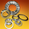 Sale quente Cylindrical Roller Bearing NU, NU, Nj Nup Series em Competitive Price