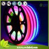 Lumière au Néon Extérieure de Corde de Noël DEL de 14*26mm 24V Digitals