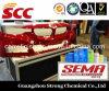 La vernice automatica Sema 2015 qualifica il rivestimento automobilistico dell'automobile del fornitore