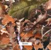 屋外のItmes (BDE81)のための1meter幅の葉のCamo水転送の印刷のフィルム
