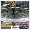 Poultry prefabbricato Farming House per Broiler/Layer/Breeder