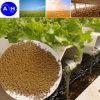 Residuo dell'amminoacido del fertilizzante del granulo organico
