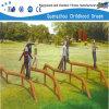 O feixe de equilíbrio Outdoor Training Parque Infantil (H14-0902)