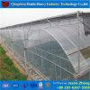 植物成長のためのはっきり商業プラスチックフィルムカバー温室