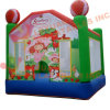 Juegos Inflables, inflables Strawberry Bouncer (LY-BO292)