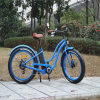 سمين إطار العجلة شاطئ طرّاد درّاجة مع مساعد كهربائيّة ([رسب-506])