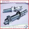 Bout de van uitstekende kwaliteit van het Anker van de Wig van het Roestvrij staal