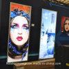 De reclame van LEIDENE Lichte Doos voor LEIDEN van de Opslag van de Winkel van Schoonheidsmiddelen Teken