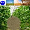 Fertilizante orgánico del nitrógeno de los aminoácidos 80 vegetales de Hydrolyed alto
