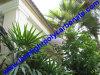 Het Afbaarden van de tuin Binnenplaats die het Afbaardende Afbaardende Huis dat van het Huis afbaardt DIY Polycarbonaat afbaardt dat van de Luifel van de Deur van de Deur van het Venster van de Luifel DIY het Afbaardende Afbaardende PC afbaardt die de Luifel van PC afbaardt DIY