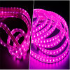 Fabbrica Direct Selling IP65 variopinto Waterproof Dimmable Illume Flexible LED Strip Lights 220V