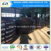 Protezione di estremità capa ellissoidale del acciaio al carbonio di BACCANO
