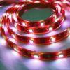 Luz de la cinta de SMD 5050 LED