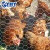 Het hexagonale Netwerk van de Draad van het Konijn van de Kip