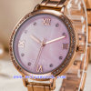Orologio personalizzato dell'acciaio inossidabile della lega di affari della vigilanza per le signore (WY-G17002A)