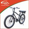 26inch Wheel Easy Ride Mountain e Bike