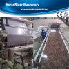 Máquina de mármol de imitación de la hoja del PVC del plástico