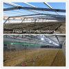 Constructor profesional de la casa de la granja avícola