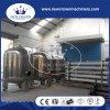 Sistema di trattamento di acqua puro del RO di certificazione 40tph del CE nella linea di produzione della bevanda