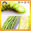 Выдержка дыни органического продукта горькfNs
