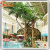 Venda por grosso de alta qualidade chinesa Palmeiras de Coco Artificial decorativas