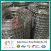 Rete metallica saldata ricoperta PVC saldata del rullo della rete metallica Rolls