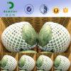 PET Schaumgummi-Ineinander greifen-Netz für Frucht-Schutz