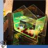 Tazón de fuente de los pescados del color del plexiglás en el vector