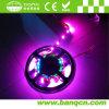 Flexible impermeabilizar la tira de la ranura LED de 5050 SMD RGB---Colorear la mudanza (STC3-S30-12)