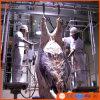 Linha equipamento da chacina do gado do matadouro da vaca