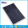 Poli modulo solare 50W di alta qualità per la centrale elettrica