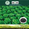Kingeta contiene il concime organico NPK 8-6-18 dell'efficace del carbonio del fertilizzante fertilizzante composto di Biohar