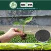 Il carbonio di fertilità di aumento di Kingeta ha basato il fertilizzante composto NPK 15-5-10