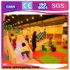 Saleのための子供Car Theme Commercial Indoor Playground Equipment