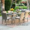 Pranzare la mobilia di vimini di nuovo disegno stabilito/la mobilia esterna giardino del patio