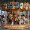 16 de Carrousel van Kiddie van de Speelplaats van het Vermaak van de Luxe van zetels