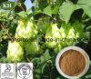 Flavonoides del extracto de los saltos el 4% ULTRAVIOLETA; 10:1
