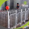 La Jaula de gestación de alta calidad fabricado en China por deba hermano Factory