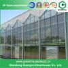 Земледелие зеленых домов высокого качества стеклянное на сбывании
