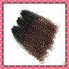 Оптовая торговля бразильского Weft волос вьющихся волосах 18дюймов