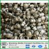 Tête ronde galvanisée et écrous de boulon enduits de PVC à vendre