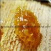 Mel, melão superior, mel 100% natural, sem antibióticos, sem metais pesados, sem bactérias patogênicas, alimentos saudáveis