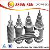 AAC/AAAC/ACSR/Acar/Aacsr todo el conductor de la aleación de aluminio