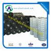 Frontière de sécurité noire de vase tissée par pp (vente et prix usine chauds)